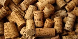 2014 10 18 - Jazz & Vins bio Héraultais - Le Delta